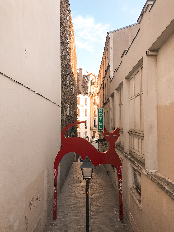 Le chat du passage de la Voûte à Paris