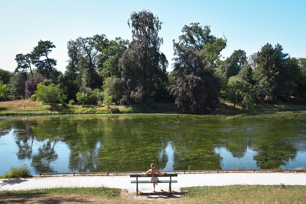 Randonnée au Bois de Boulogne à Paris