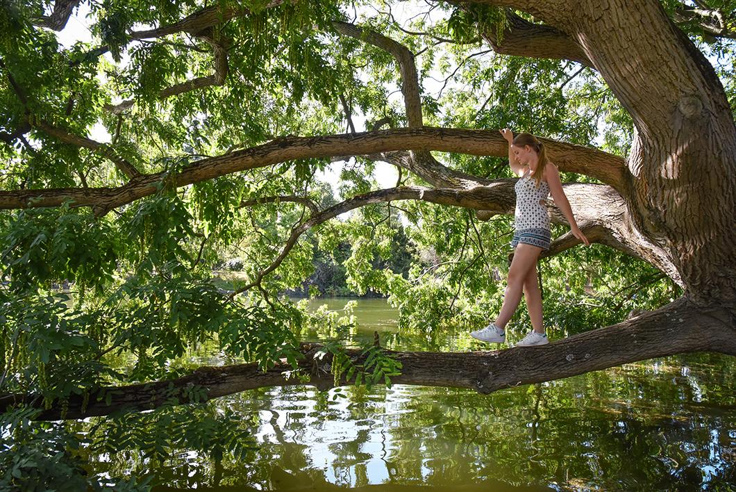 Se promener au Bois de Boulogne, incontournable à Paris