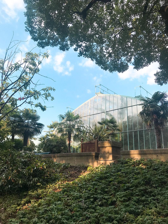 Découverte du Jardin des Serres d'Auteuil à Paris