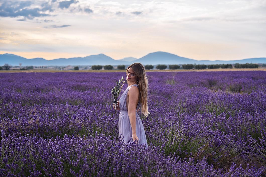Passer une journée à Valensole en Provence