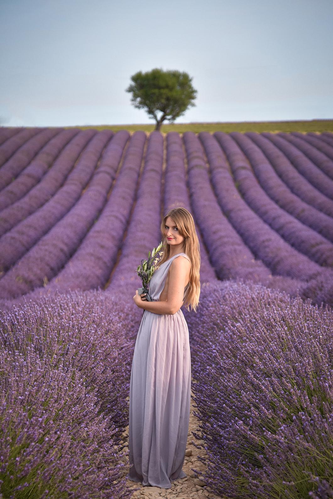 Où voir les plus beaux champs de lavande à Valensole ?