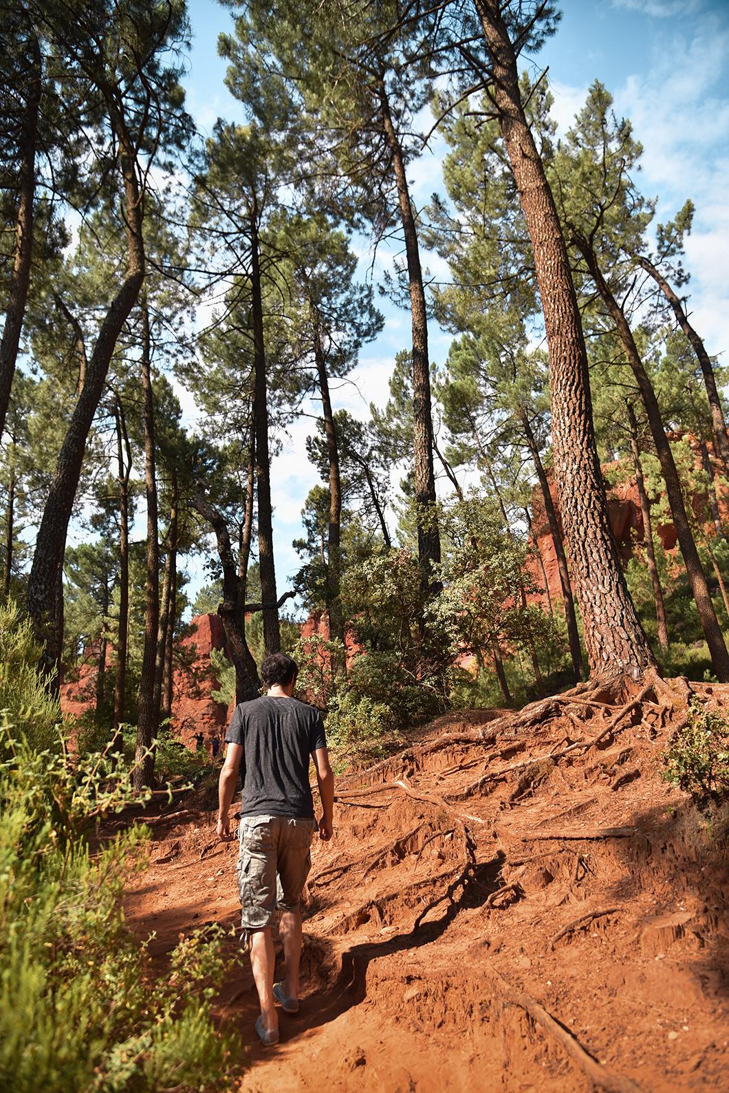 Le sentier des Ocres, balade incontournable à Roussillon