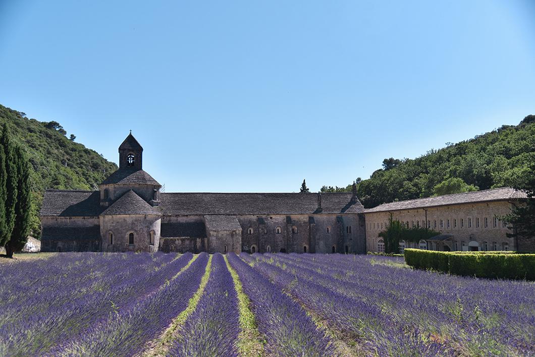 Que faire dans le Luberon ? Découvrir l'Abbaye Notre-Dame de Sénanque