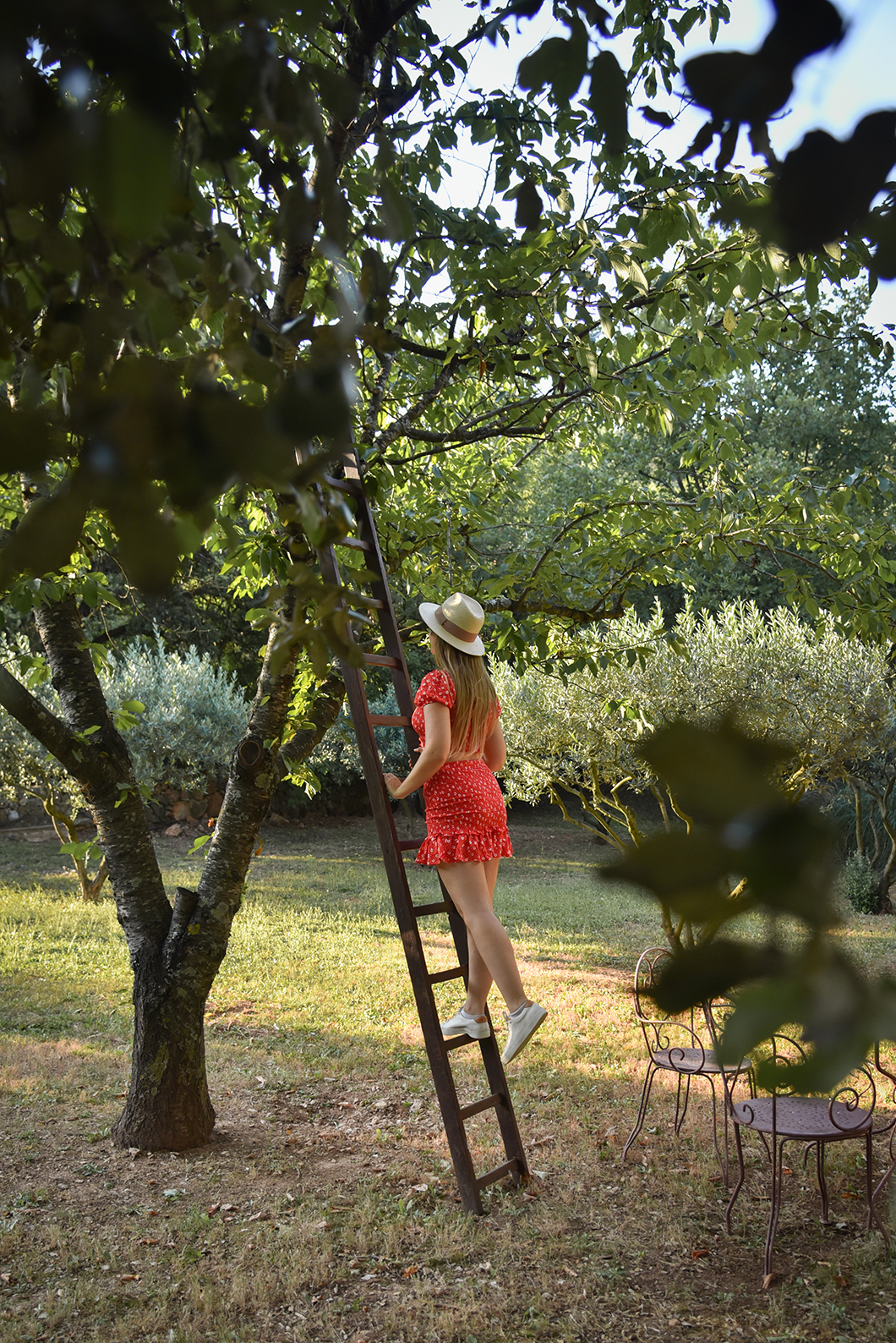 Les jardins de la Bastide du Calalou