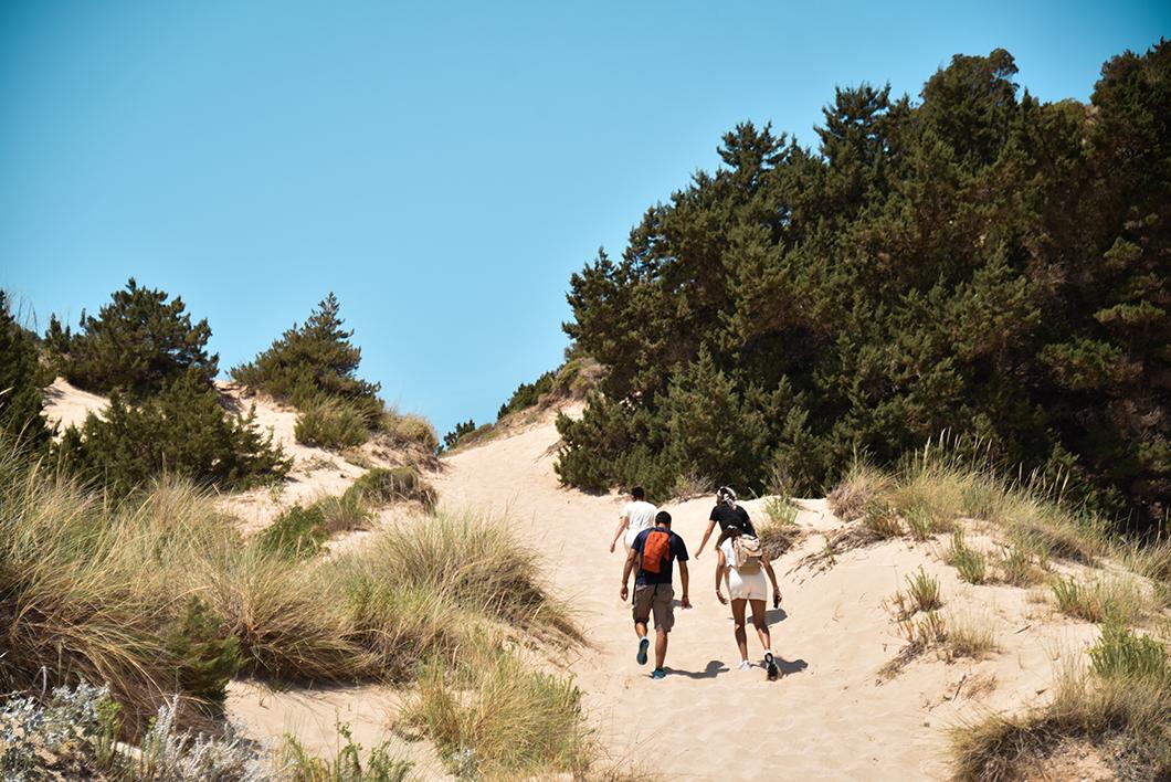 Où randonner sur la Costa Navarino ? La randonnée jusqu'à la Grotte de Nestor