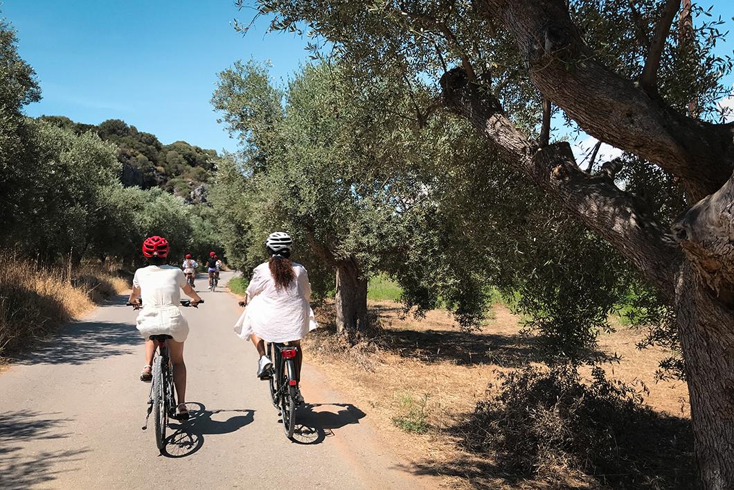 Explorer la Costa Navarino à vélo