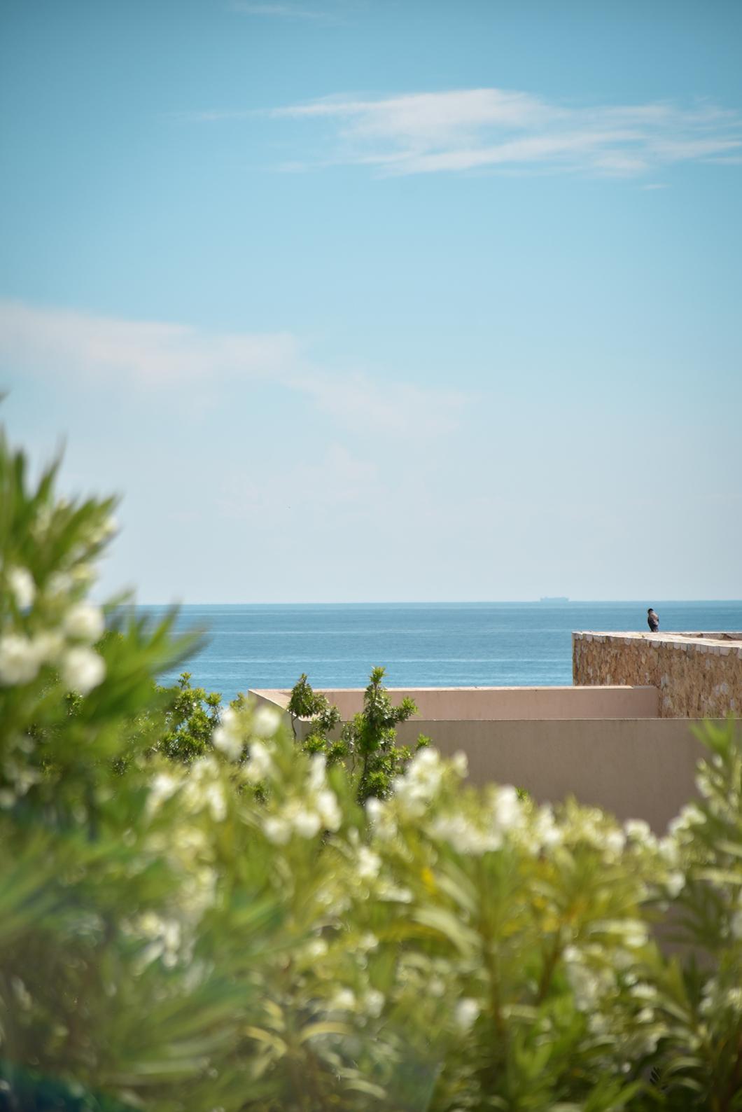 Les beaux points de vue du Westin Resort