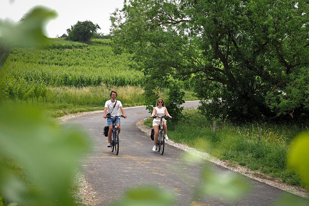 Balade à vélo au Pays de Sainte-Odile