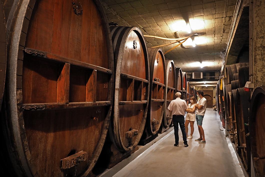 Visite et dégustation de vins à la Cave Robert Blanck